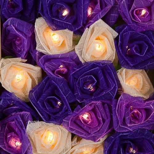 blaze-on-kohl-rose-fairy-lights-lavendel-20-leds