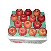 (訳あり) 菅野アップル農園 サンふじ とっても甘い ふじりんご 福島県羽山産 ご家庭用 特大 3Lサイズ 10kg