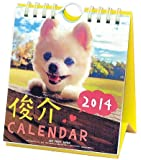 俊介 週めくりミニ 2014カレンダー