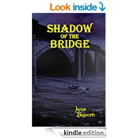 Shadow of the Bridge (Farrow and Flint series Book 2)