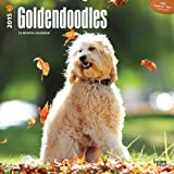 Goldendoodles 2015 Square 12x12