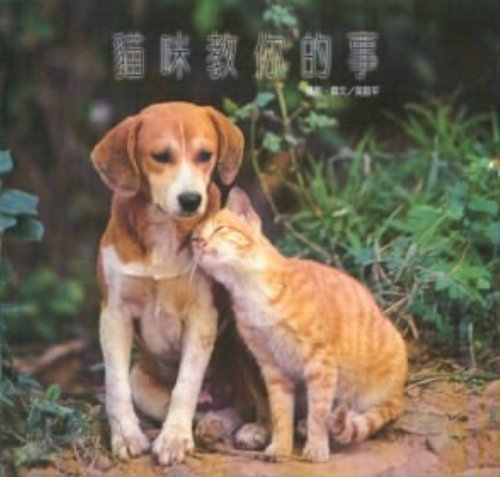 cat-teach-you-something-paperback-traditional-chinese-edition