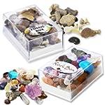 Fossil & Rock Box Set