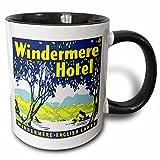 3dRose mug_129884_4 Vintage Windermere Hotel English Lakes Luggage Label Two Tone Black Mug, 11 oz, Black/White