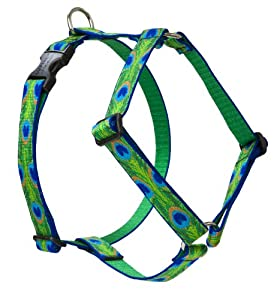 Lupine 1-Inch Tail Feathers 20-32-Inch Roman Dog Harness