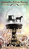 Amish Christmas on Goose Pond (VOLUME ONE)