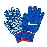 NIKE(ナイキ) 手袋 グリップ グローブ NWG42