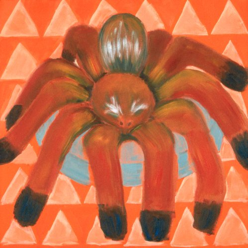 "Tajo the Tarantula - 18"" X 18"" Canvas Wall Art"