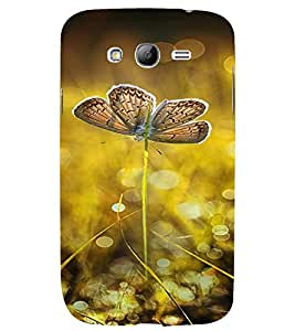 PrintVisa Butterfly Design 3D Hard Polycarbonate Designer Back Case Cover for Samsung Galaxy Grand Neo Plus