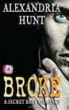img - for Broke, a Secret Baby Romance book / textbook / text book