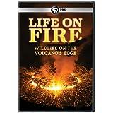Life on Fire - Wildlife on the Volcanos Edge