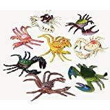 Plastic Toy Crabs (1 Dozen)