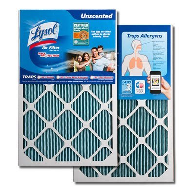 Lysol Triple Protection Furnace/AC Air Filter, 20 x 25 x 1, by Lysol