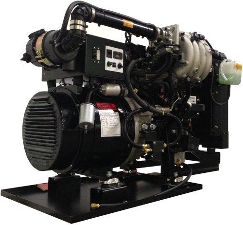 POWER TECH PTSG-15, 15,000 WATT GAS DRIVEN GENERATOR (Gas Generator 15000 Watts compare prices)