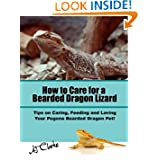 "How to Care for a Bearded Dragon Lizard ""Tips on Caring, Feeding and Loving Your Pogona Bearded Dragon Pet!"""