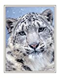 Silent Stare Snow Leopard Christmas Cards