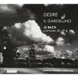Desire - Kantatenvon Johann Sebastian und Johann Christoph Bach
