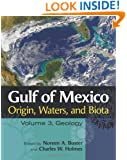 Gulf of Mexico Origin, Waters, and Biota: Volume 3, Geology (Harte Research Institute for Gulf of Mexico Studies Series)