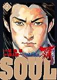 SOUL 覇 第2章 2 (ビッグ コミックス)