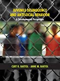 Juvenile Delinquency and Antisocial Behavior: A Developmental Perspective (3rd Edition)