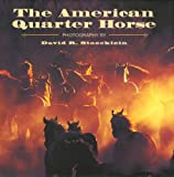 img - for The American Quarter Horse book / textbook / text book