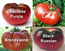 buy Heirloom Tomato 4 Plant Collection