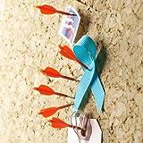 Design Ideas Archery Push Pins, Set of 8 Orange Arrows