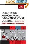 Diagnosing and Changing Organizationa...