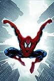 Spider-Man: Brand New Day Volume 2 TPB: Brand New Day v. 2 (Graphic Novel Pb)