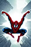 img - for Spider-Man: Brand New Day, Vol. 2 book / textbook / text book