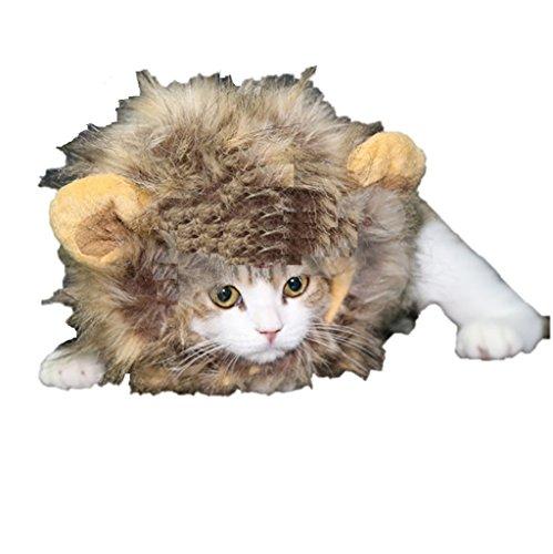 アニマルに変身 キャット用 超小型犬用 コスプレウィッグ (ライオン)