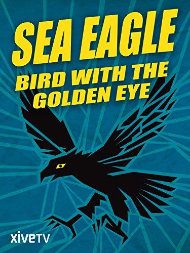 Sea Eagle: Bird with the Golden Eye