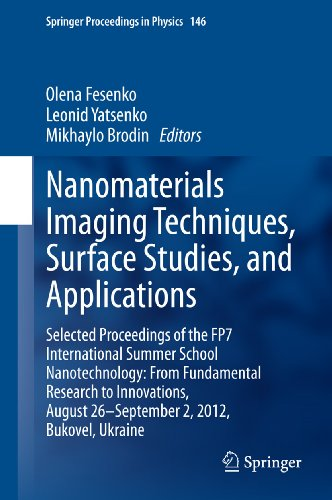 Nanomaterials Imaging Techniques, Surface Studies, And Applications: 146 (Springer Proceedings In Physics)