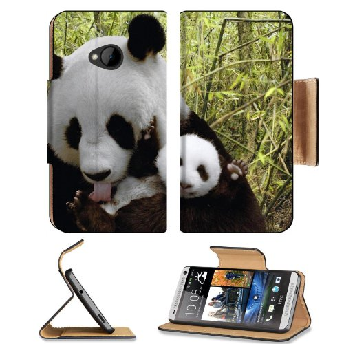 Panada Bears Baby Bamboo Nature Animal Zoo Htc One M7 Flip Cover Case With Card Holder Customized Made To Order Support Ready Premium Deluxe Pu Leather 5 11/16 Inch (145Mm) X 2 15/16 Inch (75Mm) X 9/16 Inch (14Mm) Liil Htc One Professional Cases Accessori front-54152