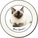 Ragdoll Cat Sentiment Car Tax Disc Holder New Animal, Ref:AC-168T