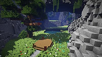 Server Design 1 – Kids Ages 8-14 Learn to Code in Java & Create Their Very Own Server with Minecraft ® (PC & Mac) [Online Code]