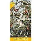 The Natural World Calendar 2016