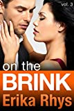 On the Brink (Volume Three in the On the Brink Series)