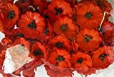 RED 50 Mulberry Paper Poppy Flower Wedding Card Craft 2 cm