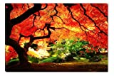 Red Maple Canvas Wall Art Print, 5 Stars Gift Startonight Nature 23.62 X 35.43 In