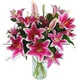 Clare Florist Sensation Lilies Fresh Flower Bouquet