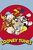 Posters: Looney Tunes Poster - Meet The Crazy Crowd (36 x 24 inches)