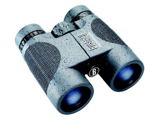 Bushnell H2O 8x 42 mm gray
