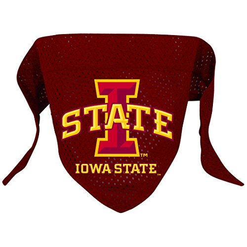 Ncaa Iowa State Cyclones Pet Bandana, Team Color, Large front-966516