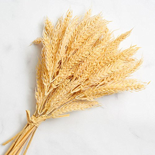 Wheat Bundle