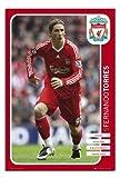 Satin Matt Laminated – Fernando Torres Liverpool FC Poster 08/09 – 36 x 24 Inches (91.5 x 61 cms)