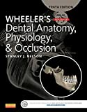 Wheelers Dental Anatomy, Physiology and Occlusion, 10e