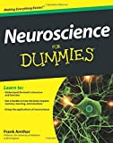 img - for Neuroscience For Dummies by Frank Amthor (2011-11-28) book / textbook / text book