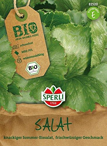 Salatsamen - Bio-Salat (Eissalat) Saladin - Bio-Saatgut von Sperli-Samen