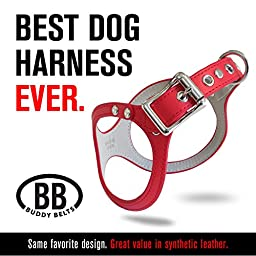 DURABLE Buddy Belt BB2 Dog Harness For Small Dogs (Red, Size 3)